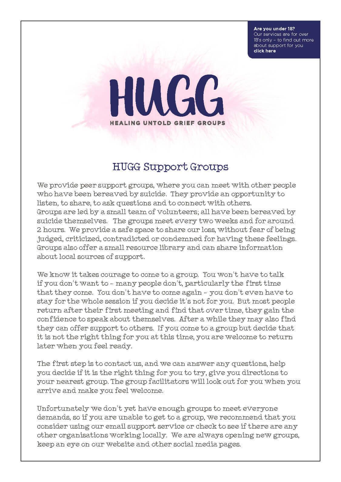 Hugg Meeting